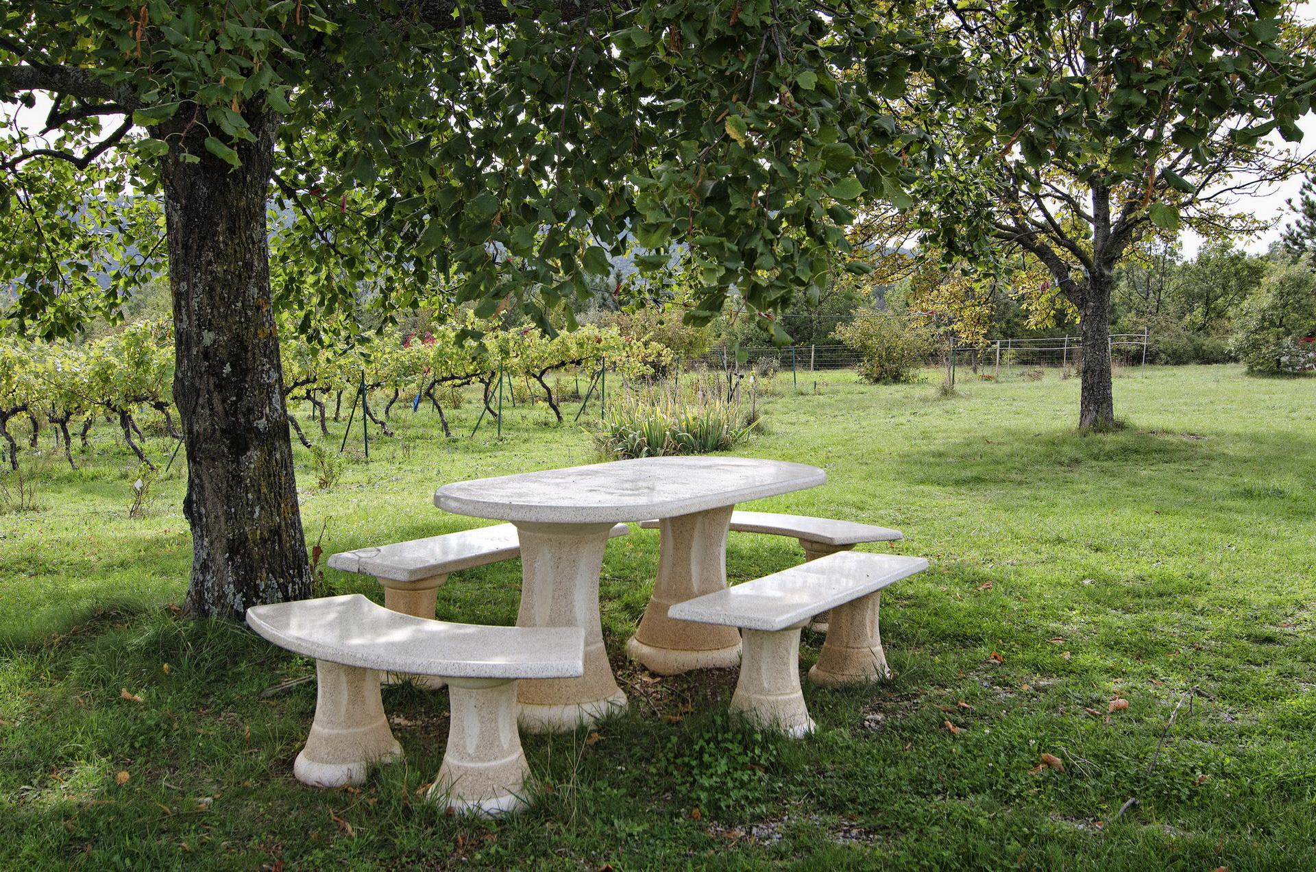 Fontaine Neuve gites et chambres d'hôtes à Lure : espace repas ombragé